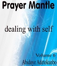 Prayer mantle volume 6 small ok