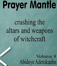 Prayer mantle volume 8 small ok